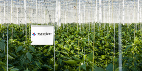 CANopen in Greenhouse Management